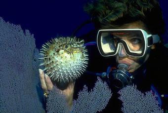 Plongeuse sous-marine