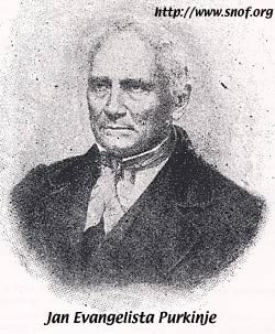 Jan Evangelista Purkinje